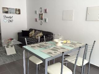 Brand New 2 bedroom apartment , with baby cribs . - Povoação vacation rentals