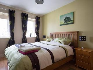 Cosy apartment in Galway's West End - Galway vacation rentals