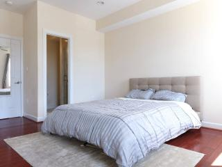 3 bedroom Modern Row House Minutes from Red line! - Washington DC vacation rentals