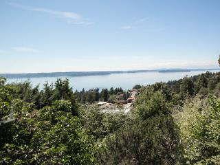 West Seattle Private, Quiet Home w/Dazzling View - Seattle vacation rentals