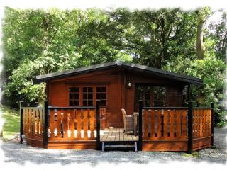 Blelham Tarn (Luxury Log Cabin) - Skelwith Bridge vacation rentals