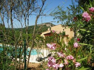 Provence: Villa Papillon - Aups vacation rentals