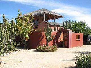 Cabo Pulmo ~ Casa Cactus ~ Up or Downstairs Suites - Cabo Pulmo vacation rentals