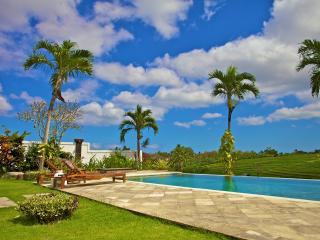 Tropical Rice Field View Villa - Canggu vacation rentals