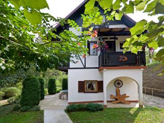 Holiday house Gianna - Brod na Kupi vacation rentals