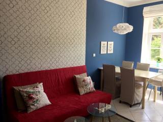 Design apartment 3 in Pilsen Center - Plzen vacation rentals