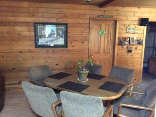 Michigan Paradise - Tustin vacation rentals