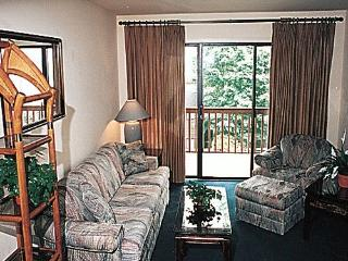 Lake Conroe - 2 Bdr/Sleeps 6, $599/week, Labor Day - Montgomery vacation rentals