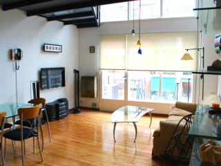 Amazing Loft Style 1 Br in Palermo - Buenos Aires vacation rentals
