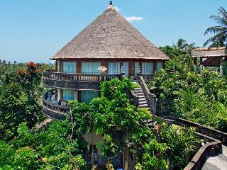 Jungle Lodge with beautiful courtyard Terrace - Negara vacation rentals