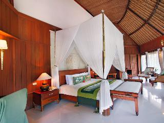 Jungle Lodge Courtyard Garden View - Negara vacation rentals