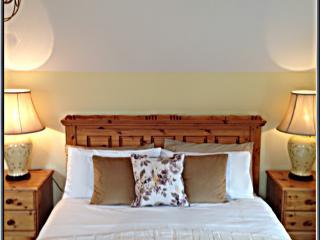 Allenagh No 3 - Longford vacation rentals