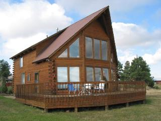 Aunt M`s Kick Back Cabin - Pagosa Springs vacation rentals