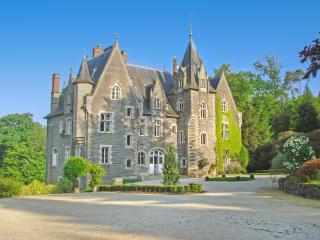 Chateau De Chasse - Pipriac vacation rentals