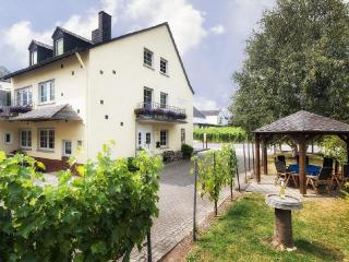 Vacation Apartment in Trittenheim - 915 sqft, wine culture,  warm (# 2910) - Trittenheim vacation rentals