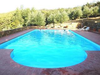Collina - Bucine vacation rentals