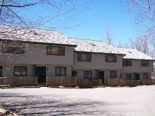 Northwoods A-5 - Davis vacation rentals