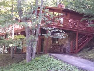 Our Greyt Escape - Davis vacation rentals