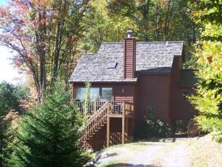 The Cabin - Canaan Valley vacation rentals