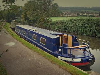 Canal Boat Holiday - Bath, Somerset. - Bathampton vacation rentals