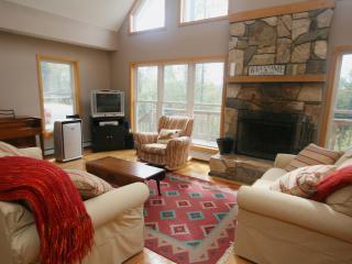 Four Seasons Chalet - Waterbury vacation rentals