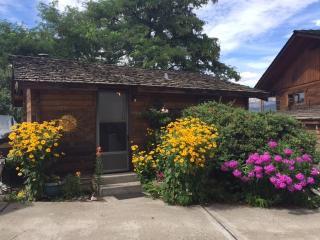Bird's Eye View Cabin - Summerland vacation rentals