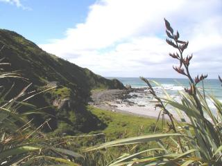 Catlins Gallery Bed & Breakfast Accommodation - Kaka Point vacation rentals
