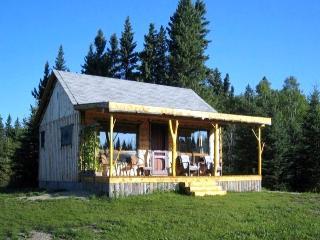 Alfalfa Cabin - Erickson vacation rentals
