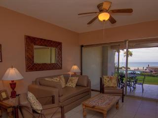 Sonoran Sun SE 112 - Puerto Penasco vacation rentals