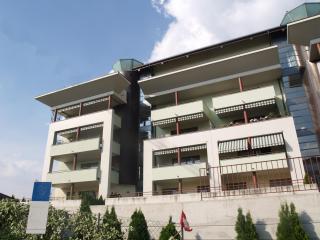 appartamento 2 1/2 locali - Mendrisio vacation rentals