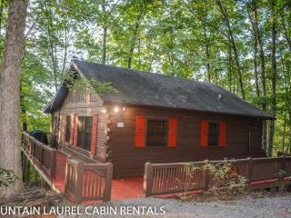 BULLWINKLE`S BUNGALOW- 2BR/1BA- COZY MOUNTAIN VIEW CABIN SLEEPS 5, SCREENED PORCH WITH PRIVATE HOT TUB, GAS GRILL, WIFI, FLAT SCREEN TV, AND PET FRIENDLY! ONLY $99 A NIGHT! - Blue Ridge vacation rentals