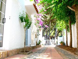 Lovely villa next to the beach - Salou vacation rentals