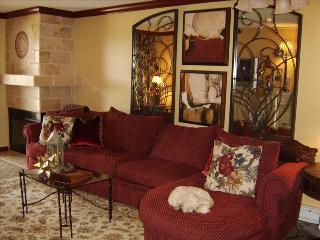 Interior Designers Retreat! - Snowshoe vacation rentals
