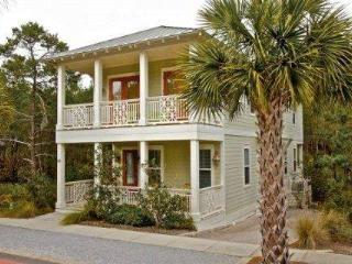Monkey Business - Seacrest Beach vacation rentals
