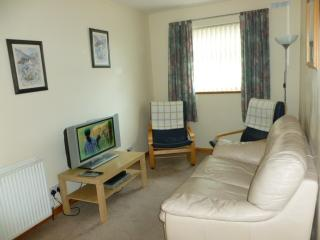 The Shelter Stone Cottage - Aviemore vacation rentals