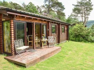 JURA, quality cabin with loch views, WiFi, deck, close amenities, Strontian Ref 22498 - Strontian vacation rentals