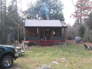 Off Grid with Cabin and Lean to - Gloversville vacation rentals