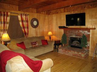 #069 Log Vista - World vacation rentals