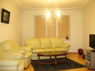 Fine apartment on Illinska street, city downtown. - Sumy vacation rentals