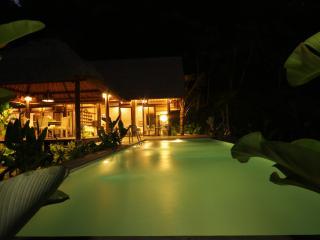 Luxurious villa, STAIRWAY TO HEAVEN, Ubud area! - Peliatan vacation rentals