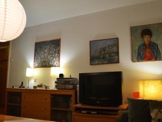 Cozy apt in the heart of Sarajevo - Sarajevo vacation rentals