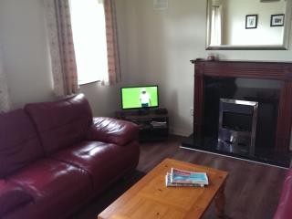 Bohermore Galway City Centre - Galway vacation rentals