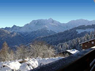 Onyx 11-40m2 en face du Mont-Blanc! - Saint Gervais les Bains vacation rentals
