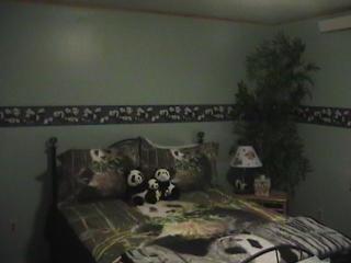 Beautiful Panda Room in King Mnt B&B - Moore vacation rentals