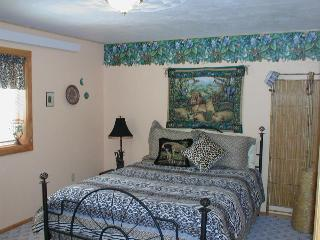 Exciting Jungle room in King Mountain B&B - Moore vacation rentals