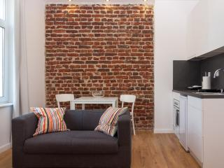 Contemporary furnished apartment in Central Sofia - Sofia vacation rentals