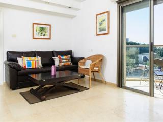 Luxury One bedroom apartment #24 - Ra'anana vacation rentals