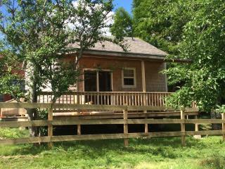 Wooden Cabin on Nova Scotian Haskap Orchard - Bridgewater vacation rentals