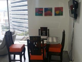 lof apartament in bucaramanga - Bucaramanga vacation rentals