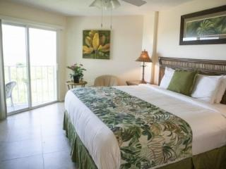Beautiful & Spacious 2/2 Condos with Ocean Views - Tavernier vacation rentals